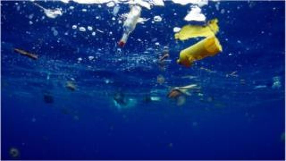 The final programme in the series will look at some of the threats facing the oceans