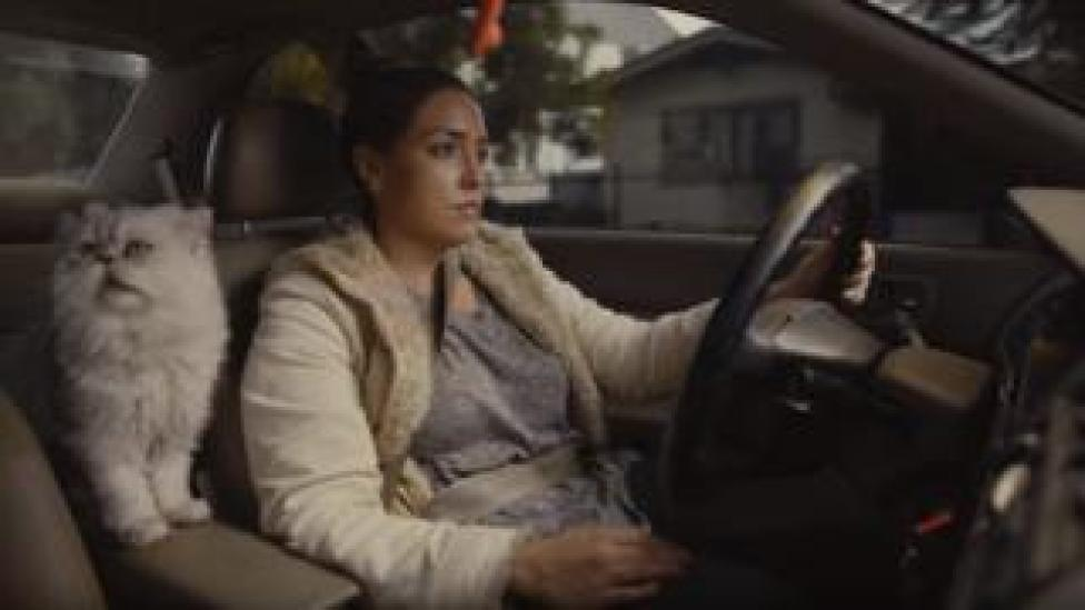 Used Car Ad Spoof