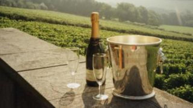 Bottle of Camel Valley champagne