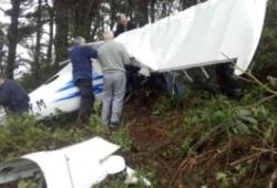 Aircraft crashes in Castlewellan Forest Park – BBC News