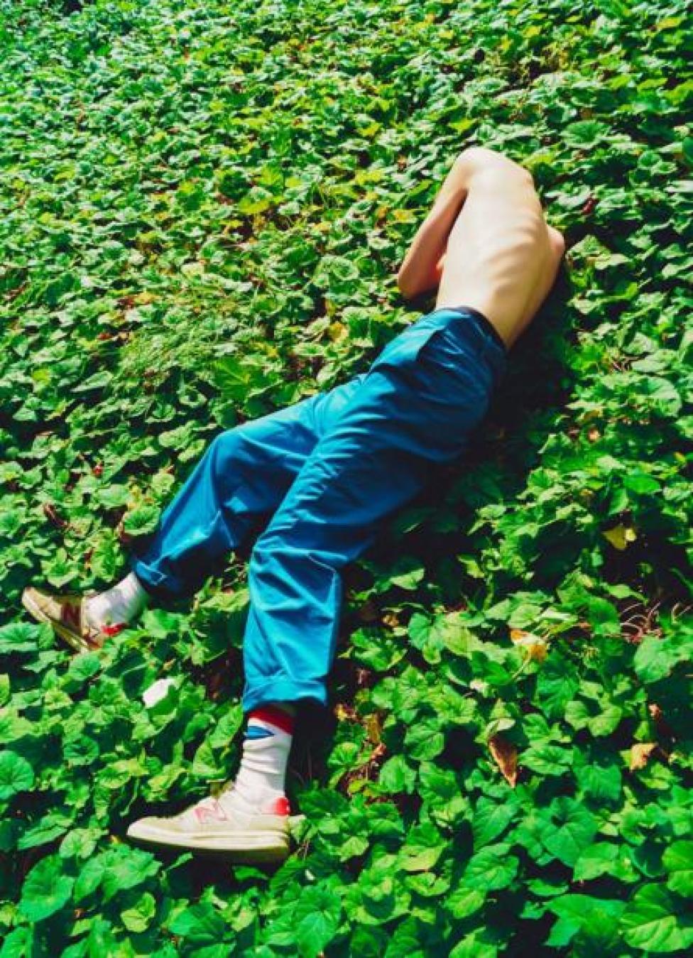 فتى مستلقٍ فوق مزروعات