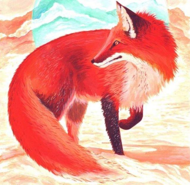 Snow Fox by Emily Ursa