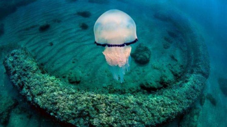 يمكن للزوار اكتشاف بقايا المدينة الرومانية تحت البحر التيراني