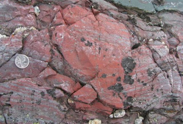 Bu kayaların mikrofosilleri barındırdığı belirtiliyor