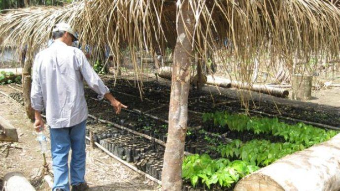 Víctor Zambrano muestra sus cultivos