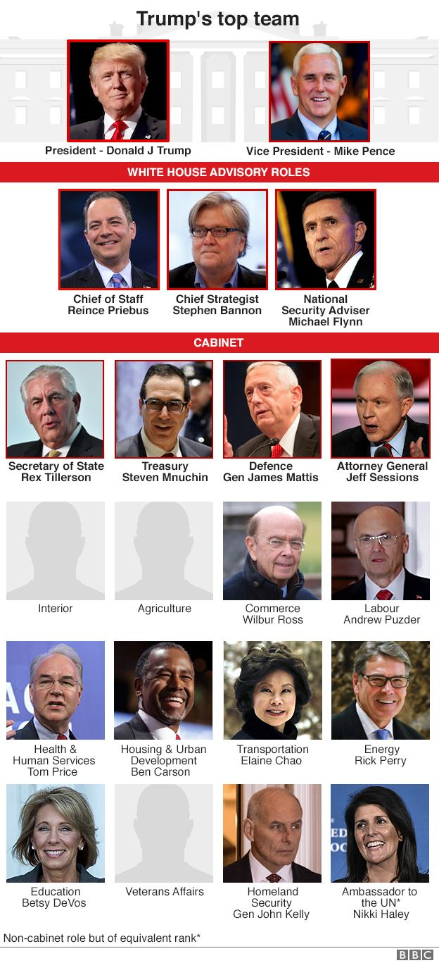 A graphic showing the make-up of Donald Trump's cabinet