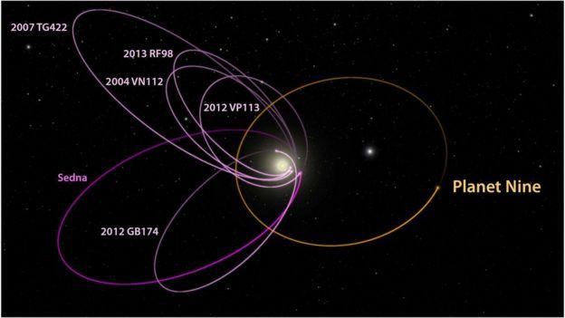 Orbital behaviour