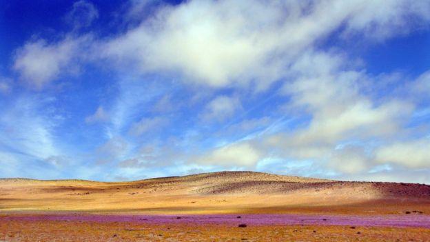 El desierto de Atacama en Chile, es uno de los lugares más secos del planeta.