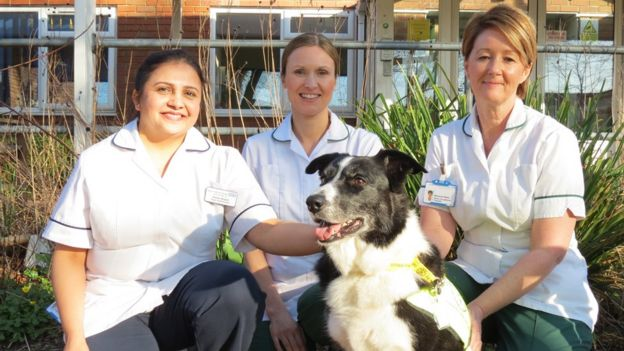 Kavita Shastri, Sarah Hodges and Marianne Welsh with Katie the dog