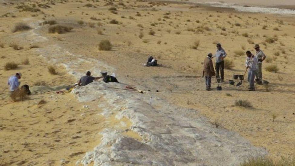 Arqueólogos trabajando en el desierto