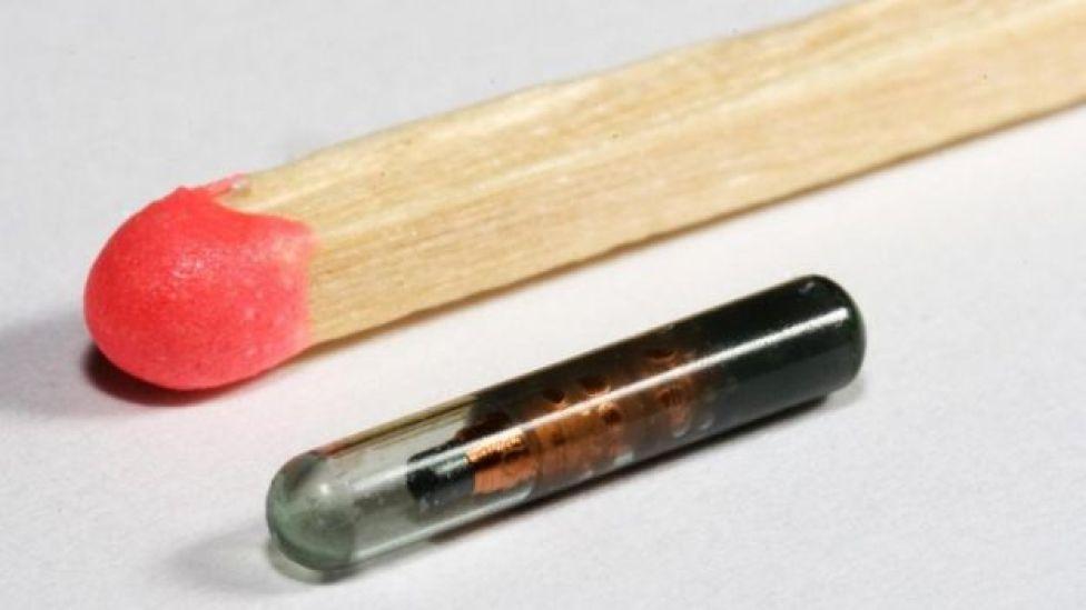 El microchip de Gasson al lado de un fósforo de madera