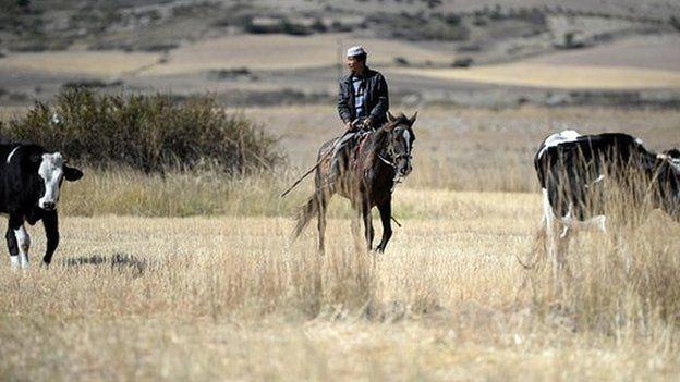 Arrieros a caballo en el campo en la zona de Xinjiang, en China.