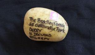 Posted potato