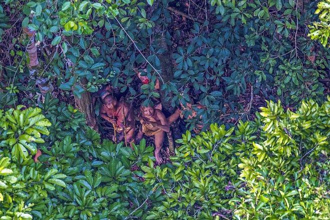 တောတွင်းသားတွေက အပေါ်က လာကြည့်နေတဲ့လူတွေကို ရန်လိုစိတ်တဝက်၊ စူးစမ်းလိုစိတ် တဝက်နဲ့ စောင့်ကြည့်နေခဲ့ပါတယ်။