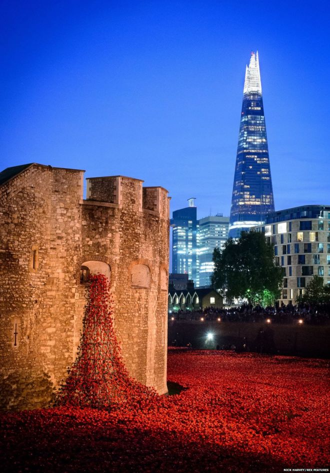 Poppies and the Shard