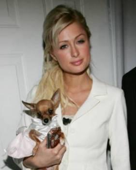París Hilton y su perro