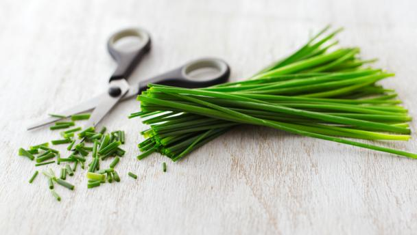 Image result for chives recipes