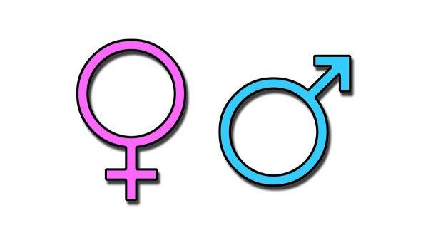 BBC Radio 4 - Woman's Hour, Exclusive figures on gender ...