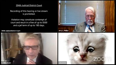 Lawyer gets stuck with cat filter during virtual court case #world #BBC_News