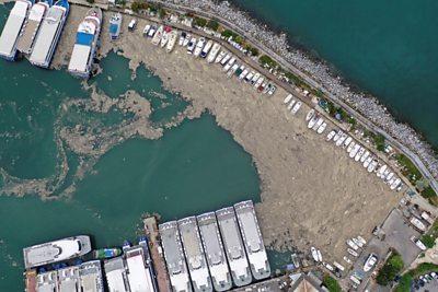 'Sea snot' spreads across Turkish sea #world #BBC_News