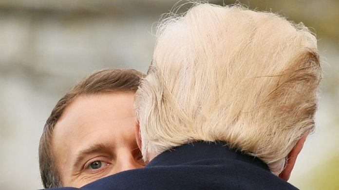 Macron to send Trump replacement friendship tree 1