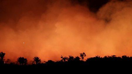 「アマゾン 火事」の画像検索結果