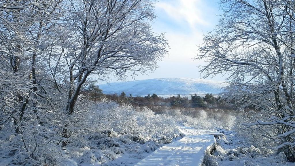 _87754933_snowstevemiddlemass.jpg