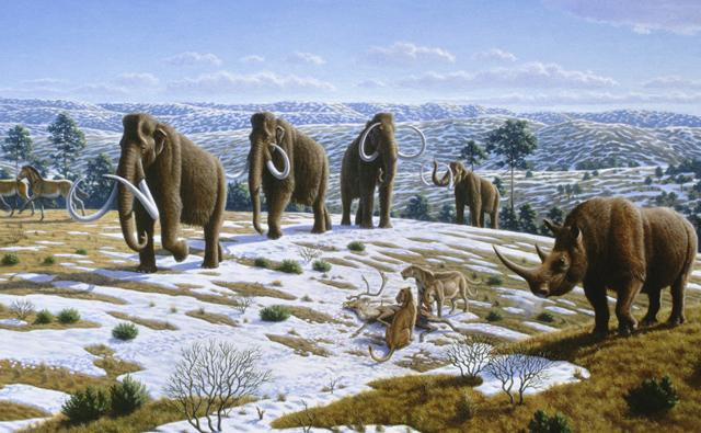 https://i1.wp.com/ichef.bbci.co.uk/naturelibrary/images/ic/credit/640x395/l/la/last_glacial_period/last_glacial_period_1.jpg