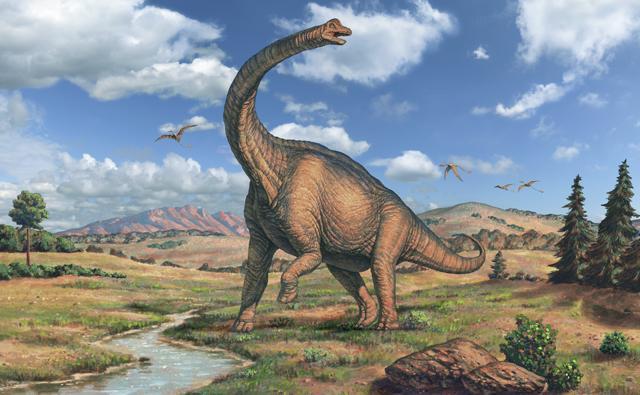 Bilderesultat for sauropods