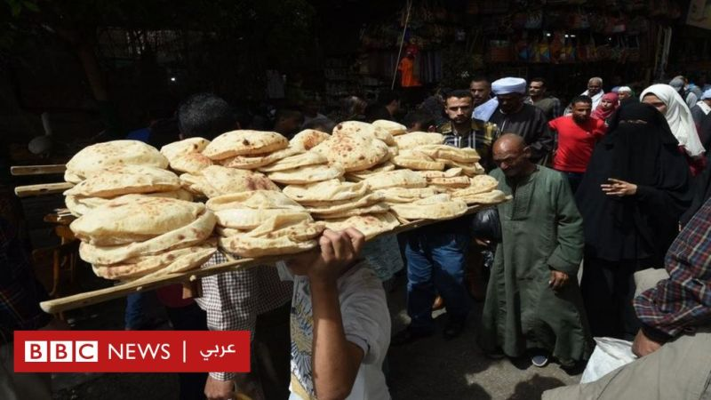 Demands To Ban Substances Harmful To Health Used In The Food Industry In Egypt World Today News