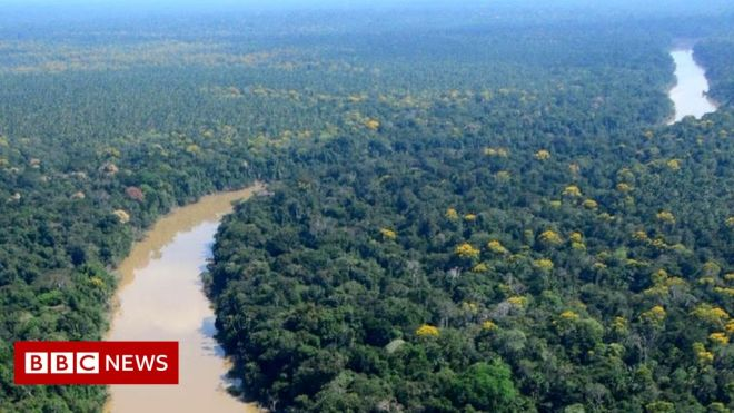 Amazon-dwellers lived sustainably for 5,000 years #world #BBC_News