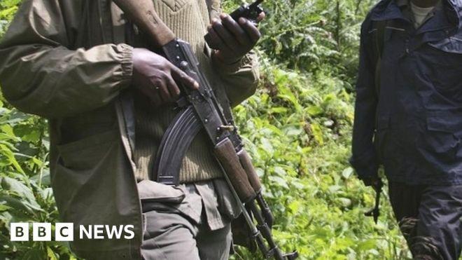 Six rangers killed in DR Congo's Virunga National Park #world #BBC_News