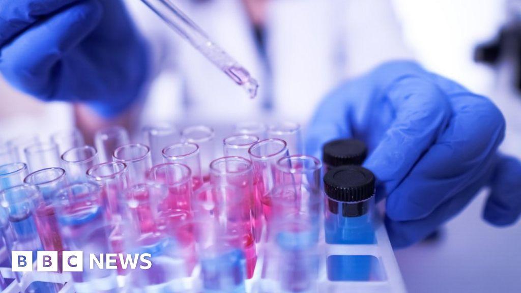 Coronavirus antibodies tests 'put public at risk'
