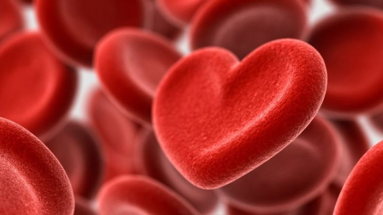 Image result for stop heart disease