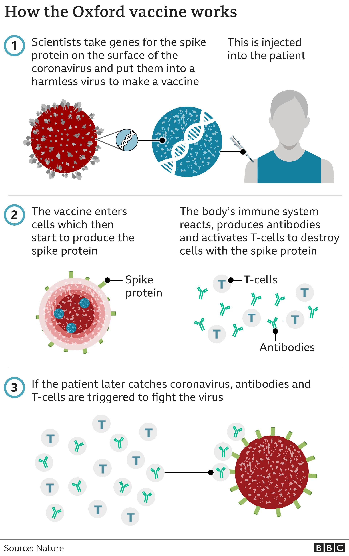 astrazeneca thailand delays vaccine