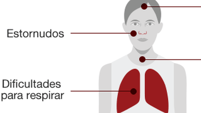 Qué tan letal es el coronavirus y otras 5 preguntas clave sobre la epidemia