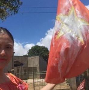 Việt Nam, nhân quyền, Huỳnh Thục Vy