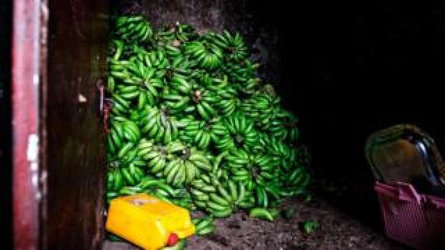 Bananas are stored in a storage at the area of Atikilt Tera, in Addis Ababa on July 2, 2019. - Global demand for agricultural products is projected to grow by 15 percent over the coming decade, while agricultural productivity growth is expected to increase slightly faster, causing inflation-adjusted prices of the major agricultural commodities to remain at or below their current levels, according to an annual report by the Organisation for Economic Co-operation and Development 5OECD) and the UN's Food and Agriculture Organization (FAO).