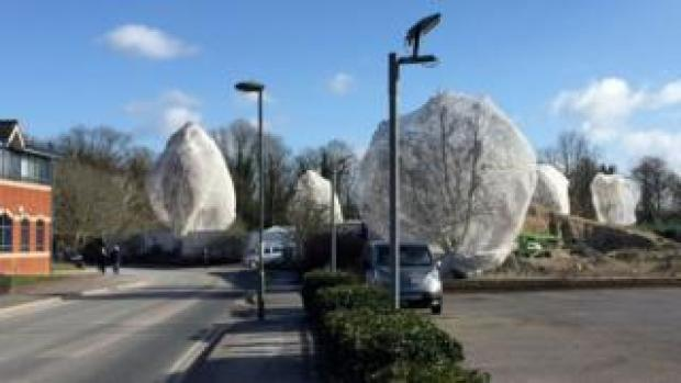 Netted trees in Guildford, Surrey