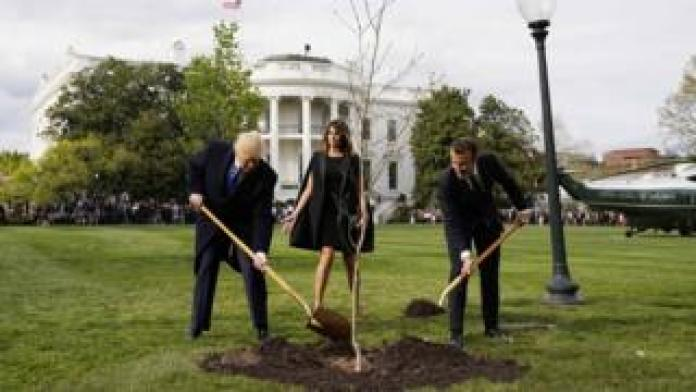 President Trump and Macron plant a tree as Melania Trump looks on