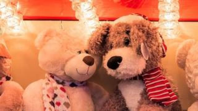 Teddies - one happy, one sad