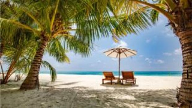 Exotic beach with recliners