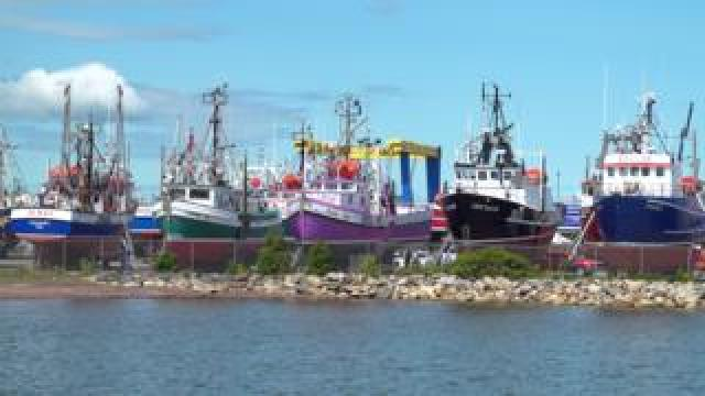 Snow crab fishing boats in dry dock in Shippagan, New Brunswick