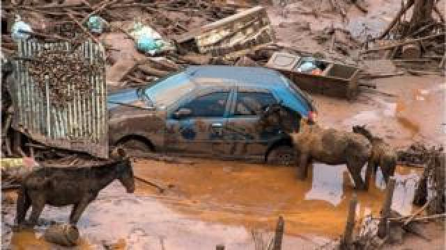 The Samarco dam disaster