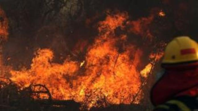Wildfire in the Pantanal in 2019 destroyed tens of thousands of hectares
