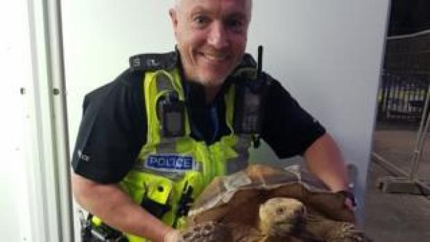 PC Munn with the giant tortoise