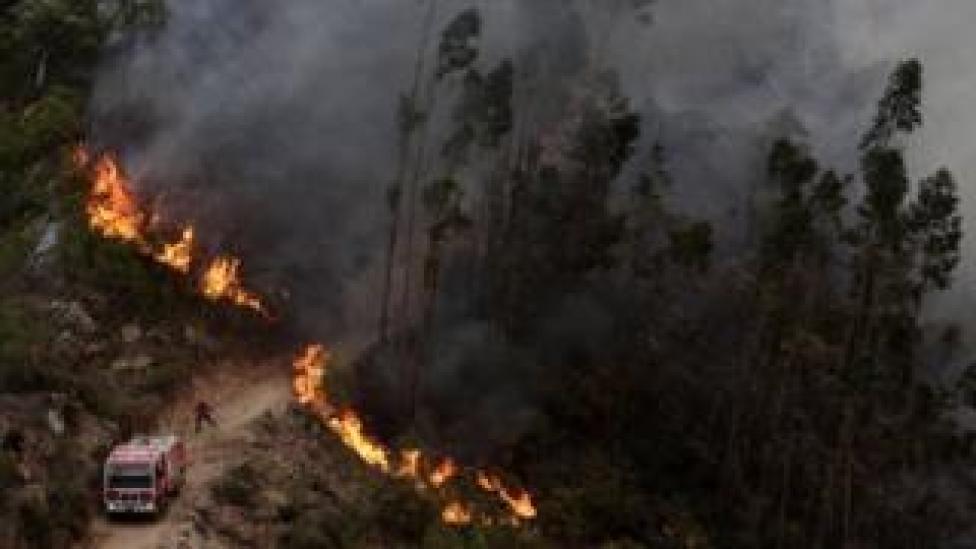 Fire in Monchique - 3 August