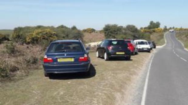 Parked cars at Wilverley Plain