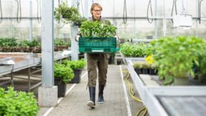 Woman working in a garden centre