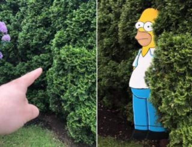 Home Simpson in a bush